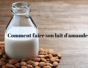 lait d'amande 02